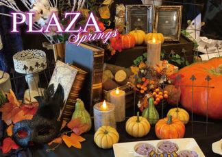 ホテルインフォメーション紙  PLAZA Springs vol.149  10月号